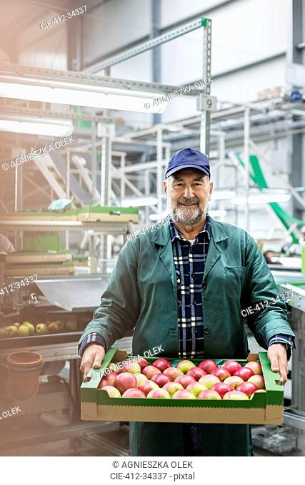 Portrait smiling worker carrying box of apples in food processing plant