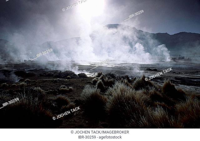 CHL, Chile, Atacama Desert: the hot springs and geysers of El Tatio