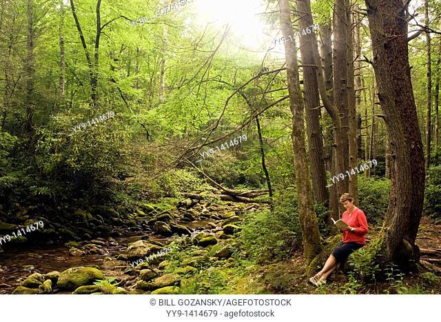 Woman reading by creek - Pisgah National Forest, near Brevard, North Carolina