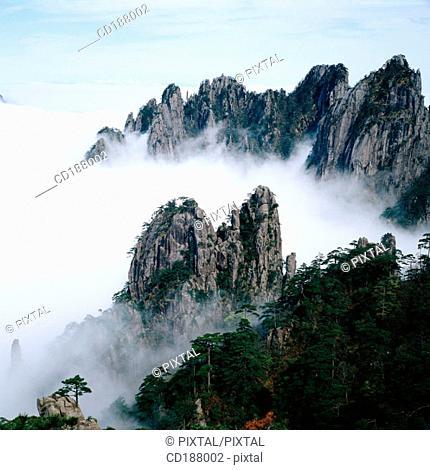 Mt. Huangshan. China