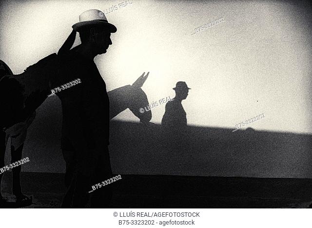 Silhouette of a man in a straw hat with a donkey reflected on a wall. Mahon, Balearic Islands, Spain, Europe