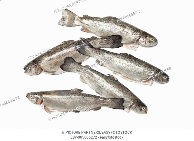 Fresh cleaned trouts on white background