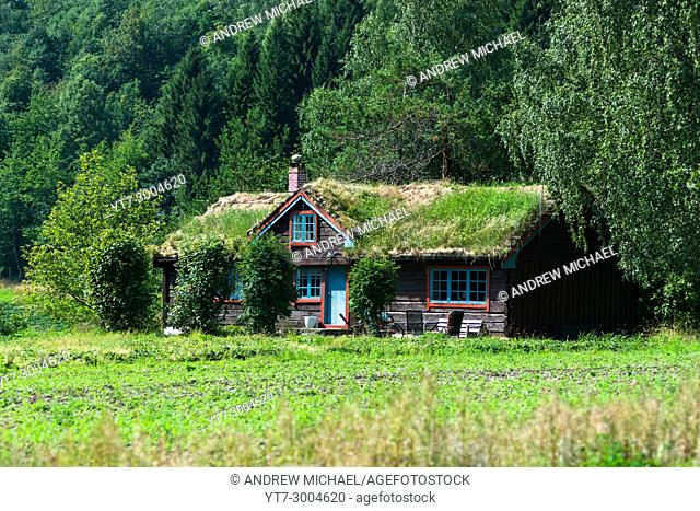 A sod roof log cabin with grass covering the roof. Seen near Šndalsne, Møre og Romsdal county, Norway
