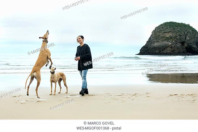 Spain, Llanes, young woman playing with her greyhounds on the beach