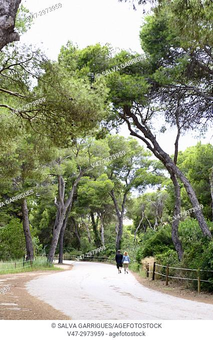 Couple walking through the golf courses at the Parador Nacional de el Saler, Valencia, Spain