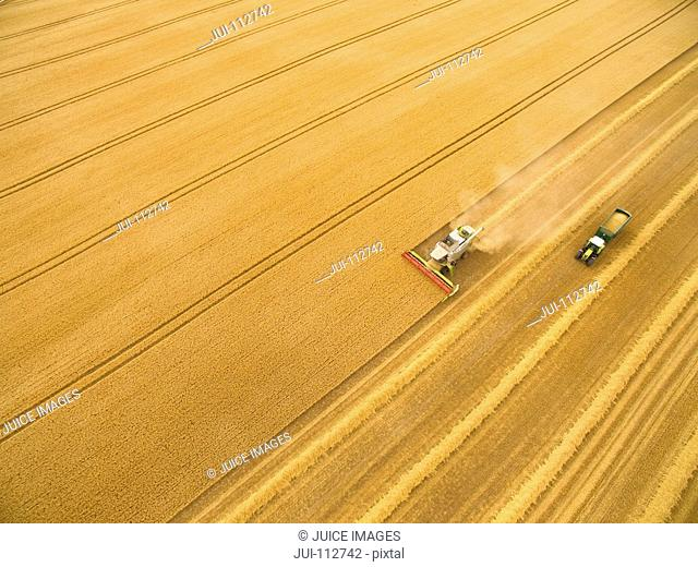 Aerial view of combine harvester in golden barley field