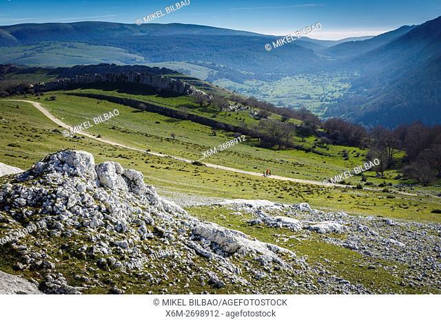 Mountain meadows. Urbasa-Andia Natural Park. Navarre, Spain, Europe