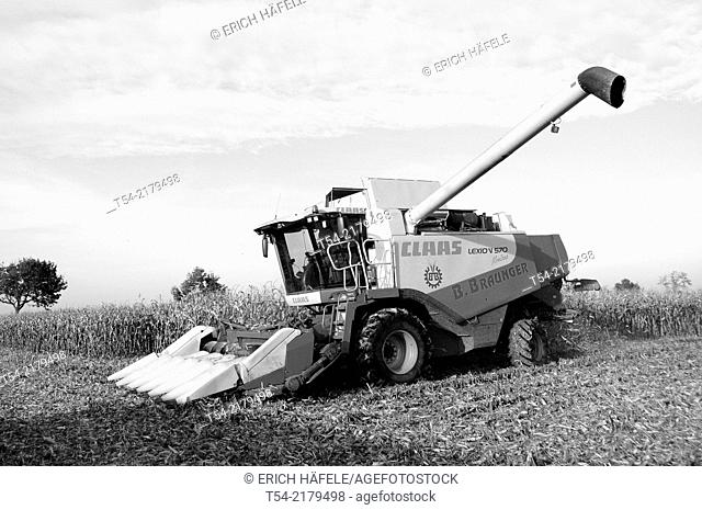 Claas Combine harvester harvesting