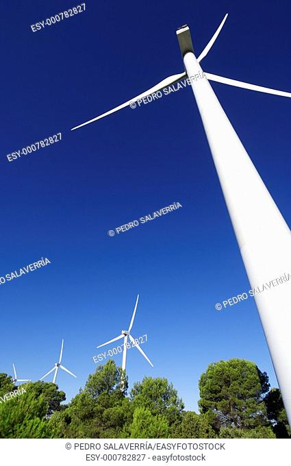 group of wind turbines in a wooded area, Fuendetodos, Saragossa, Aragon, Spain