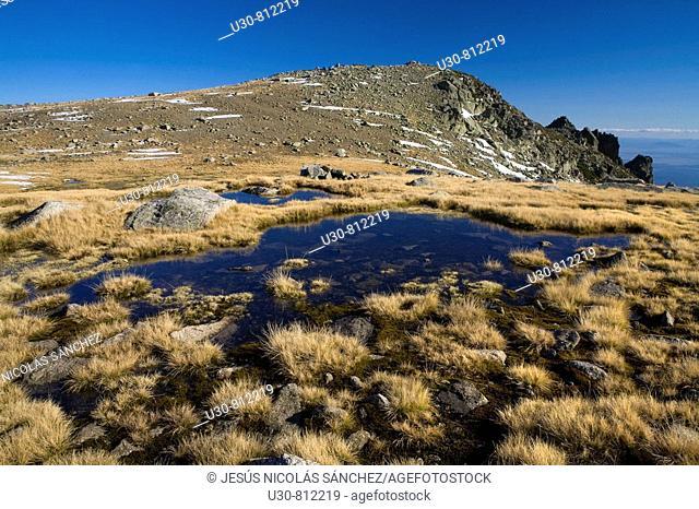 Summits of Sierra de Gredos  Alpine meadows pooling near Morezón and Navasomera  Sierra de Gredos Regional Park  Navacepeda de Tormes  Avila  Castilla y Leon...
