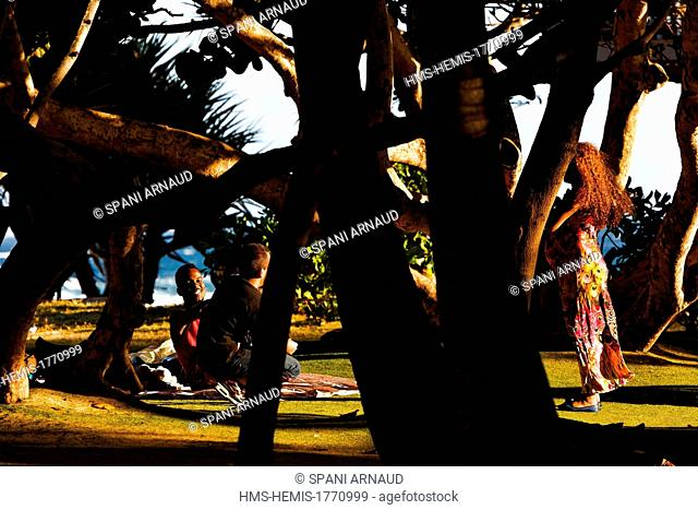 France, Reunion island (French overseas department), Saint Pierre, Gardens waterfront, a family picnic under the Banyan Trees at sunset