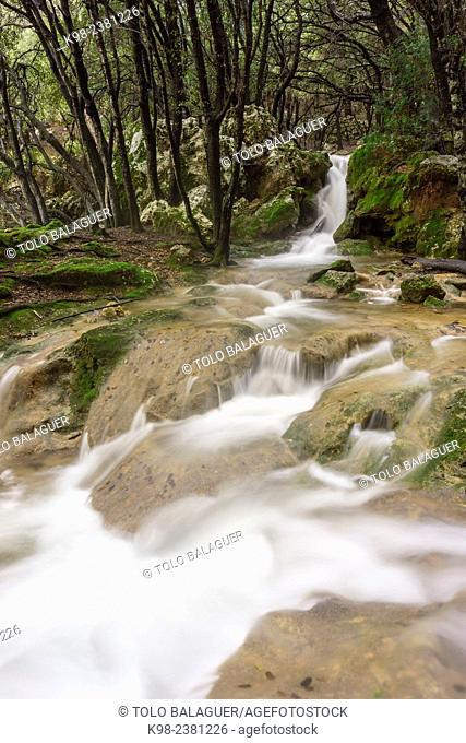 Torrente Es Freu. Orient, Sierra de Tramuntana. Mallorca. Balearic Islands. Spain