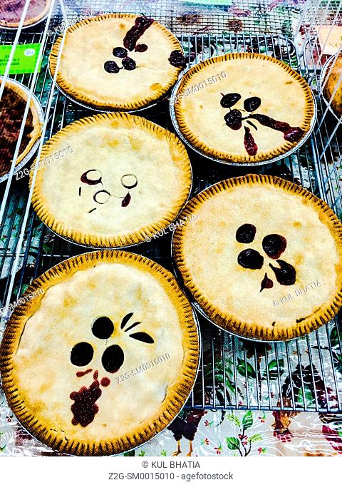 Freshly baked homemade pies for sale, rural Ontario, Canada