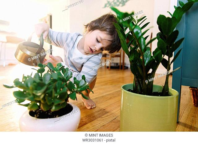 Young boy crouching indoors beside a flower pot, holding watering can, watering plant
