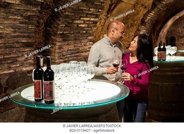 Couple of tourists, Wine tasting, Cellar wine barrels, Rioja Alavesa, Araba, Basque Country, Spain, Europe