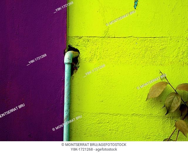 Green and lilac wall with baby blue waterpipe