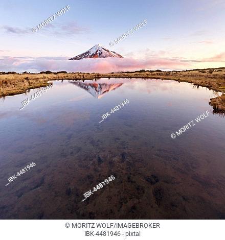 Reflection in Pouakai Tarn lake, pink clouds around stratovolcano Mount Taranaki or Mount Egmont at sunset, Egmont National Park, Taranaki, New Zealand