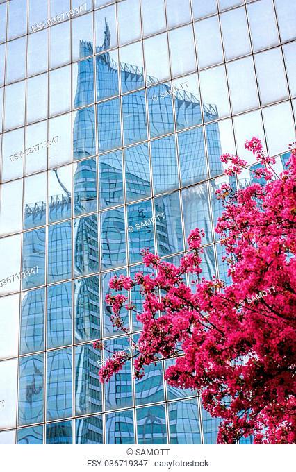 Paris La Defense with spring tree in France