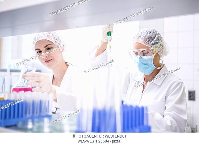 Two scientists working together in lab