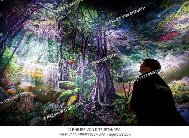 """A visitor looking at the work """"""""Amazon"""""""" by artist Yadegar Asisi in the interior of the Panoramic Rotunda in the Hanover Zoo in Hanover, Germany"""
