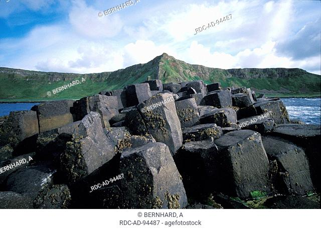 Giants Causeway basalt columns at the coast County Antrim Northern Ireland