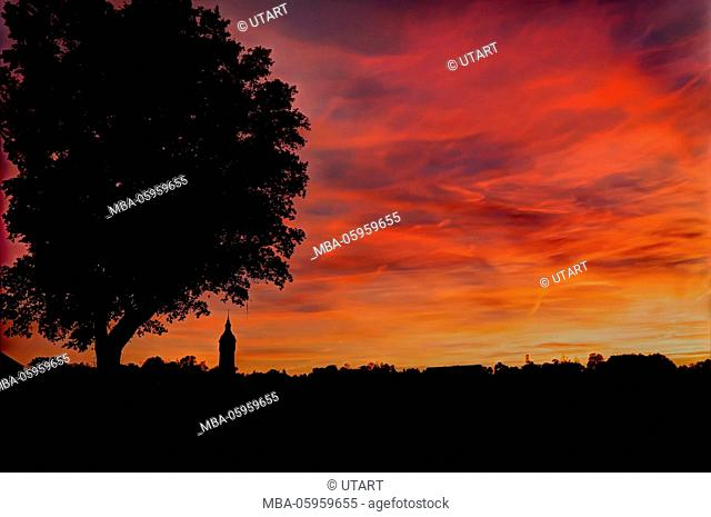 The Burning Shore, silhouette of tree and village, photography horizontal