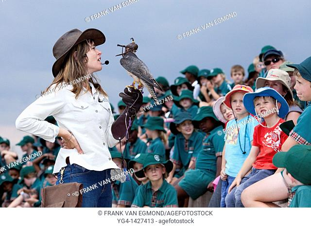 Shannon Hoffman in front of a school class during her flight display show, showing a Lanner Falcon  The shows are aimed at educating children and adults and...