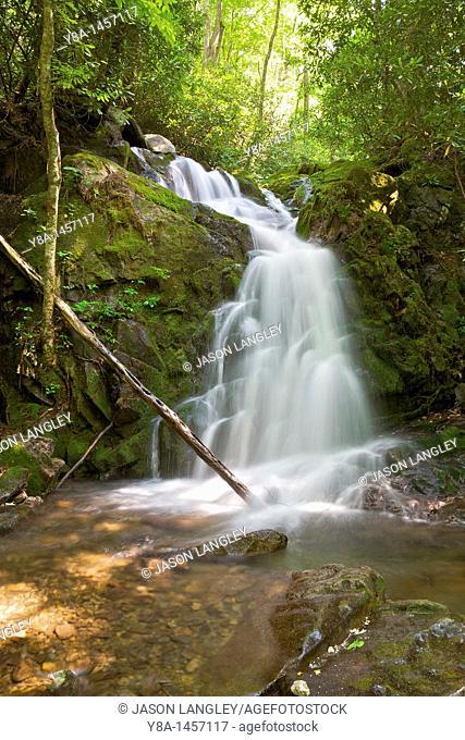 Mouse Creek Falls on Big Creek, along Big Creek Trail  Smoky Mountains National Park, North Carolina, USA