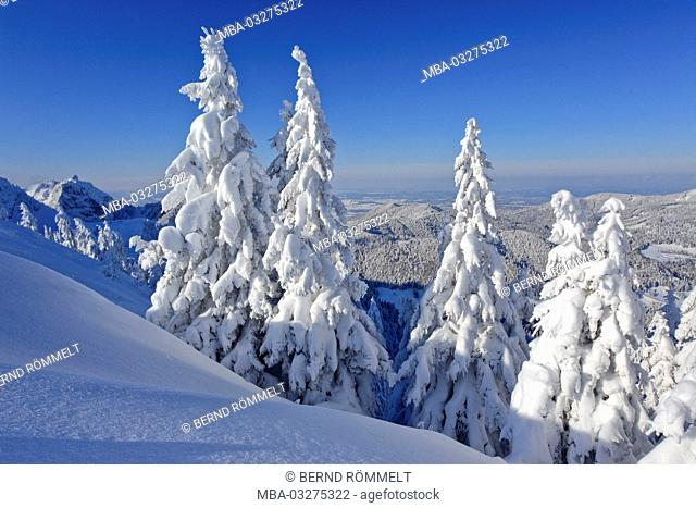 Germany, Bavaria, Upper Bavaria, Isarwinkel, Brauneck, winter scenery, Rabenkopf