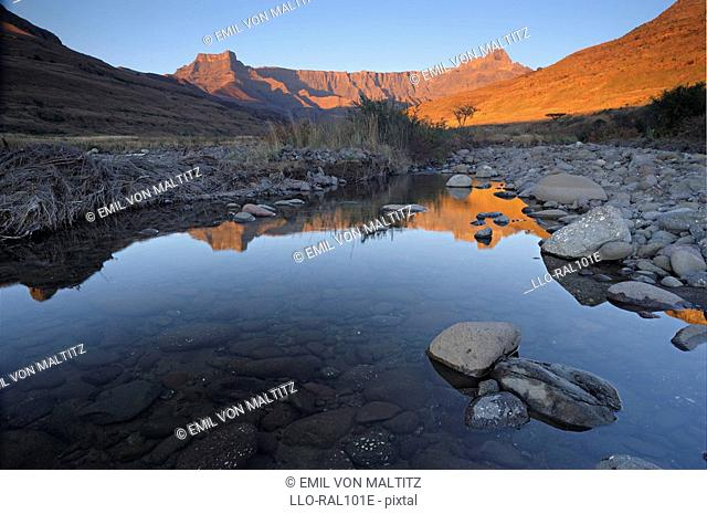 Reflection in the Tugela River of the Amphitheatre wall at dawn, Royal Natal, Drakensberg Ukhahlamba National Park, Kwazulu-Natal, South Africa
