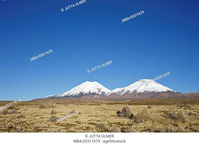 Bolivia, national park Sajama