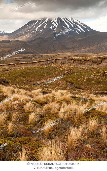 Ngauruhoe Mount. Tongariro National Park. New Zealand