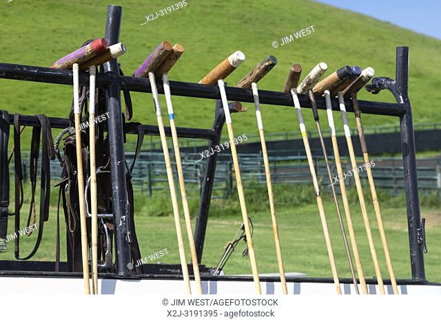 Waikii, Hawaii - Polo mallets on a truck at the Mauna Kea Polo Club. The club plays Sunday afternoons on the slopes of the dormant volcano, Mauna Kea