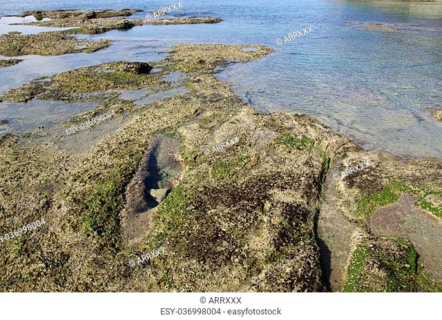 Tidal area with rocky surface at low tide in japan