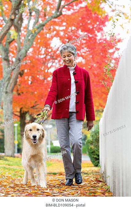 Mixed race woman walking dog