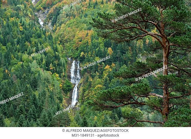 Autumn forest and waterfall at Bujaruelo Valley, Ordesa & Monte Perdido National Park, Huesca, Aragon, Spain