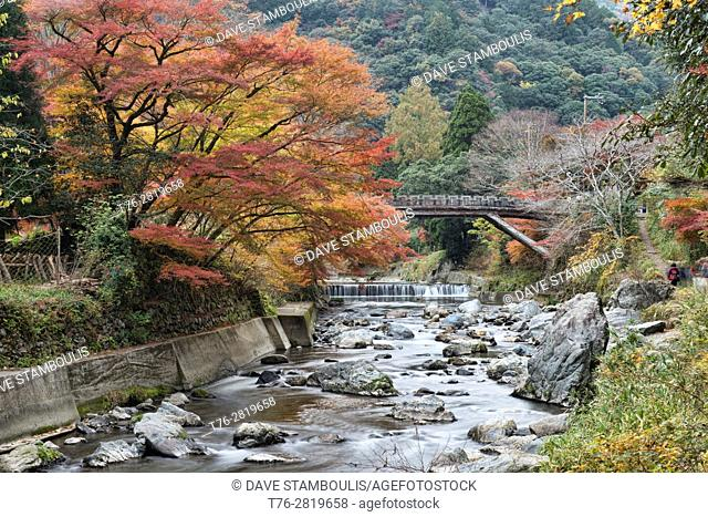 Autumn colors along the Hozo River in Kiyotaki, Kyoto Prefecture, Japan