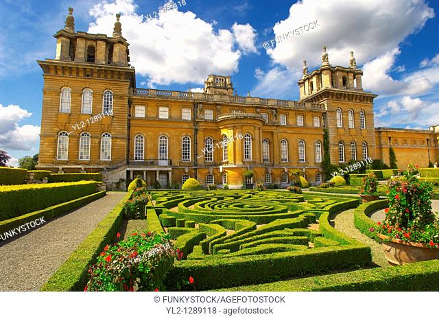 Blenheim Palace Italian Garden with topiary maize - England