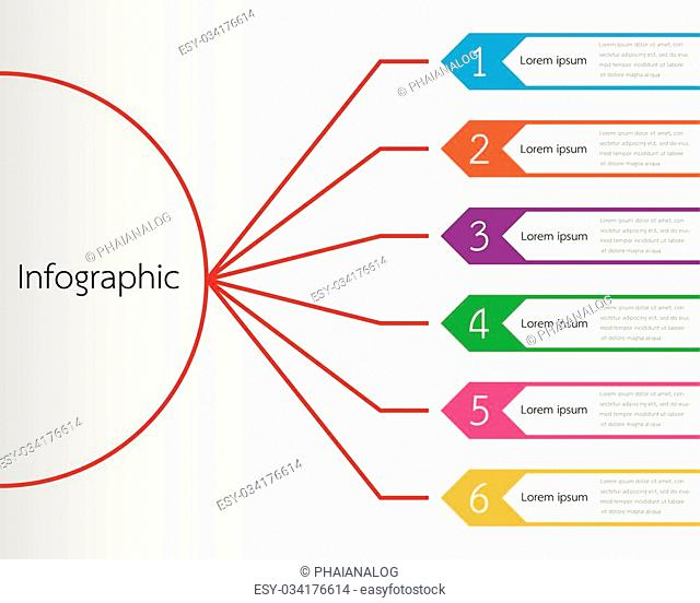 Vector infographic templates for detailed reports from the various process steps