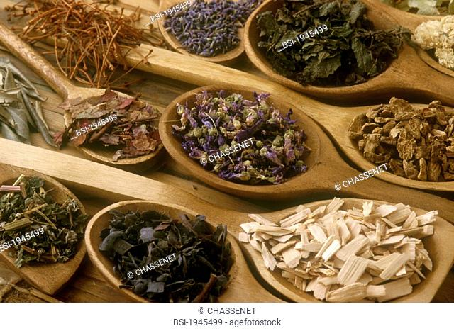 HERBALIST'S SHOP<BR>Medicinal plantes :  cherry stalk, lavanda, balm,camomile, mallow, harpagophytum,  lim tree sapwood, fucus