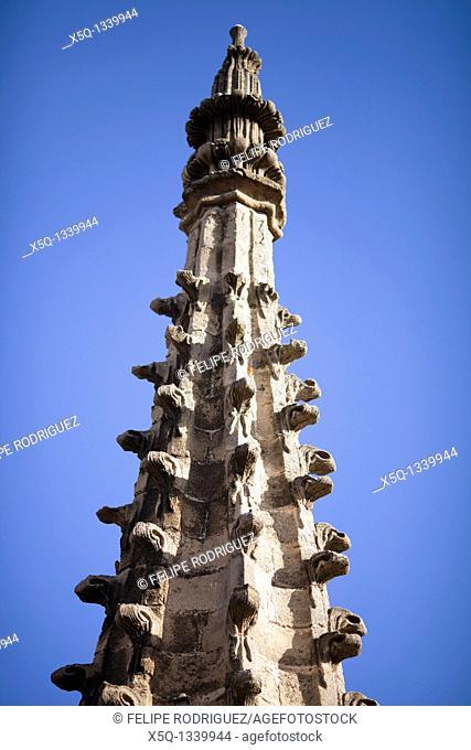 Gothic pinnacles, Santa Maria de la Sede Cathedral, Seville, Spain