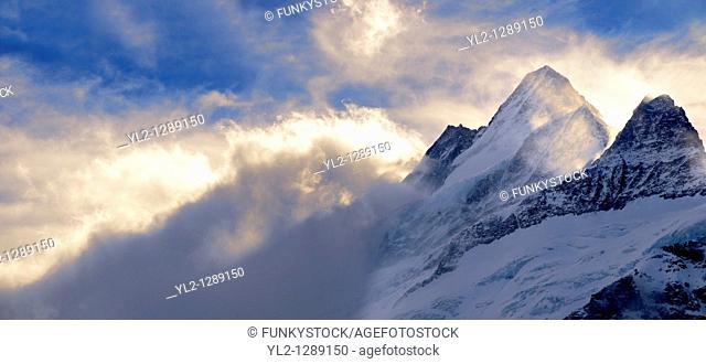Wetterhorn Mountain in clouds at sunset  Swiss Alps, Switzerland