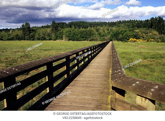 Boardwalk, Belfair-Theler Wetland Park, Belfair, Washington