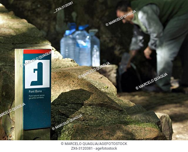 Man picking up water from Font Bona fountain, at Sant Marçal area. Montseny Natural Park. Barcelona province, Catalonia, Spain