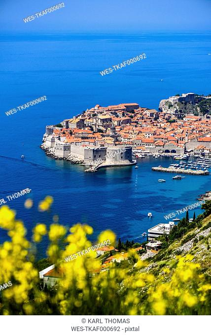 Croatia, Dubrovnik, View of old town