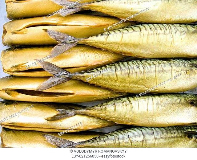 Cold smoking a mackerels