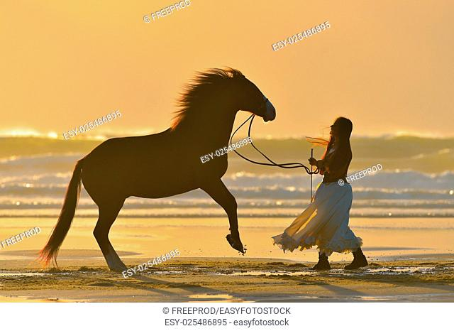 Rider stroking and making his horse rear on the beach, France