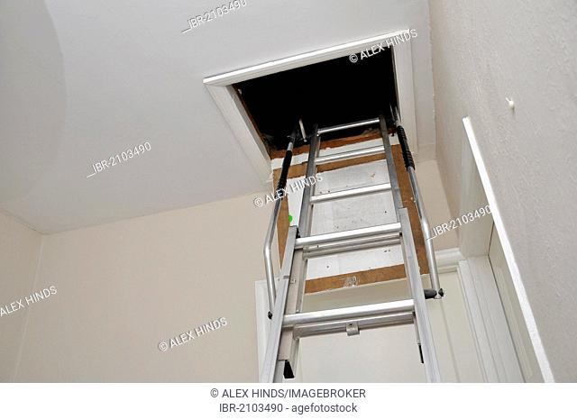 Loft ladder hatch access