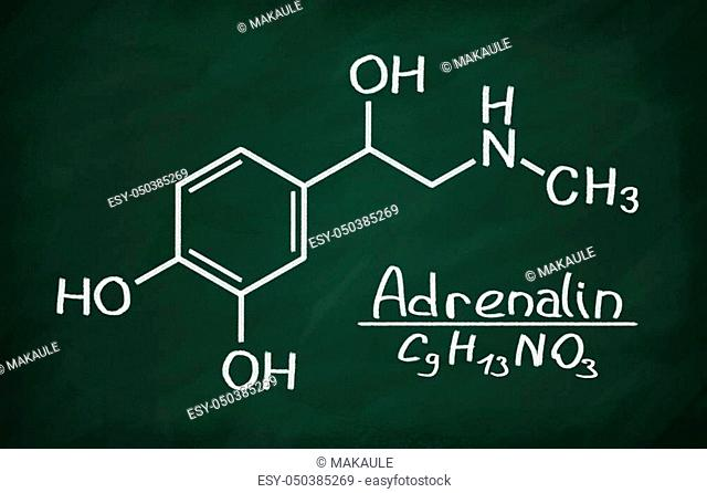 Structural model of Adrenalin on the blackboard