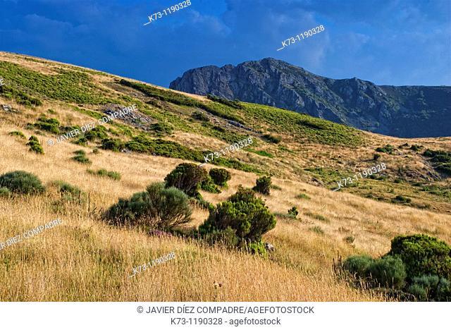 Cordillera Cantabrica. Picos de Europa Regional Park. Leon province. Castilla y Leon. Spain